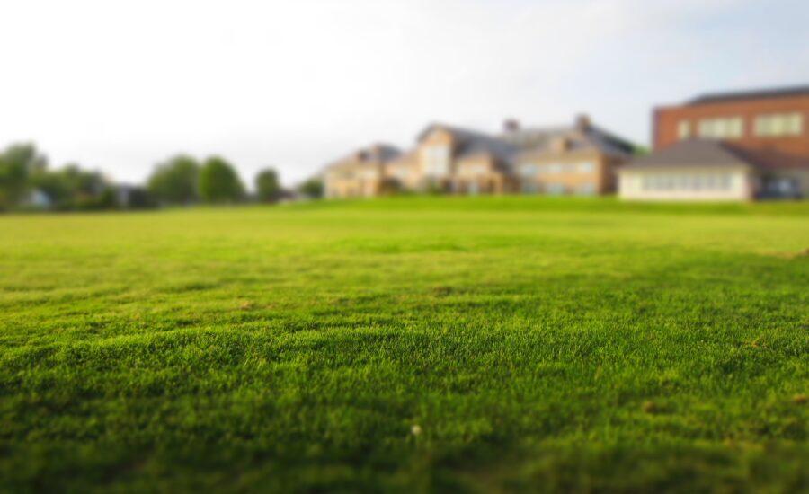 Duży, zieony trawnik z zabudowaniami w oddali.