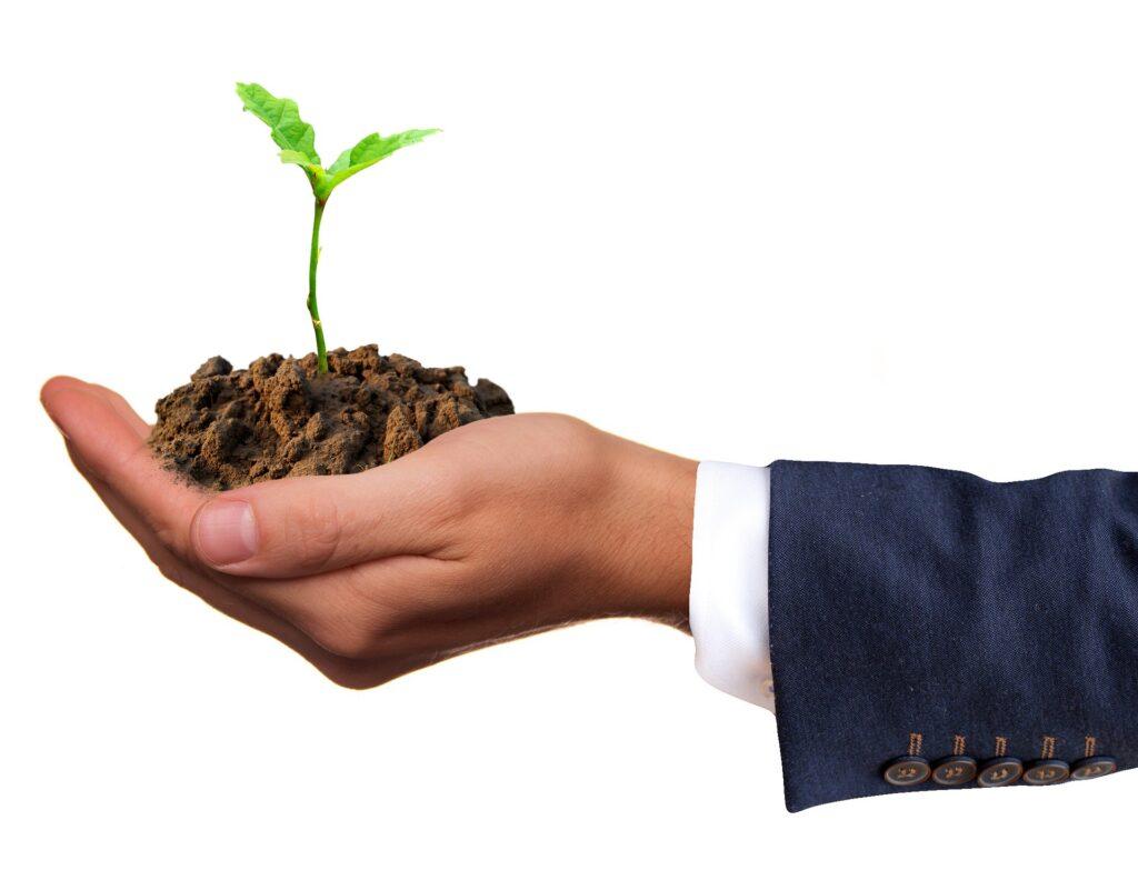 Męska dłoń, trzymająca ziemię, w której rośnie mała, pojedyncza, zielona roślina.  Mężczyzna ubrany jest w garnitur.